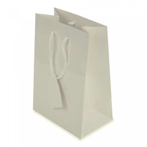 Bolsa de papel plastificado
