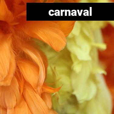 Confeymas - Carnaval